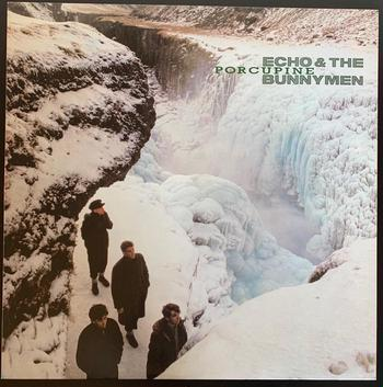 Echo & The Bunnymen  / Porcupine